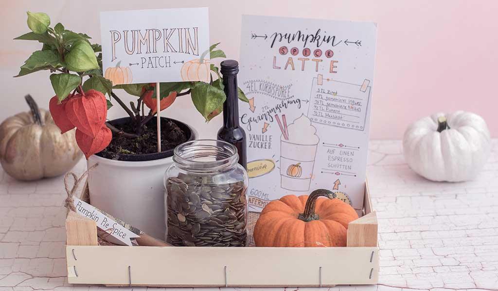 Herbstliche Geschenkidee: Pumpkin Patch