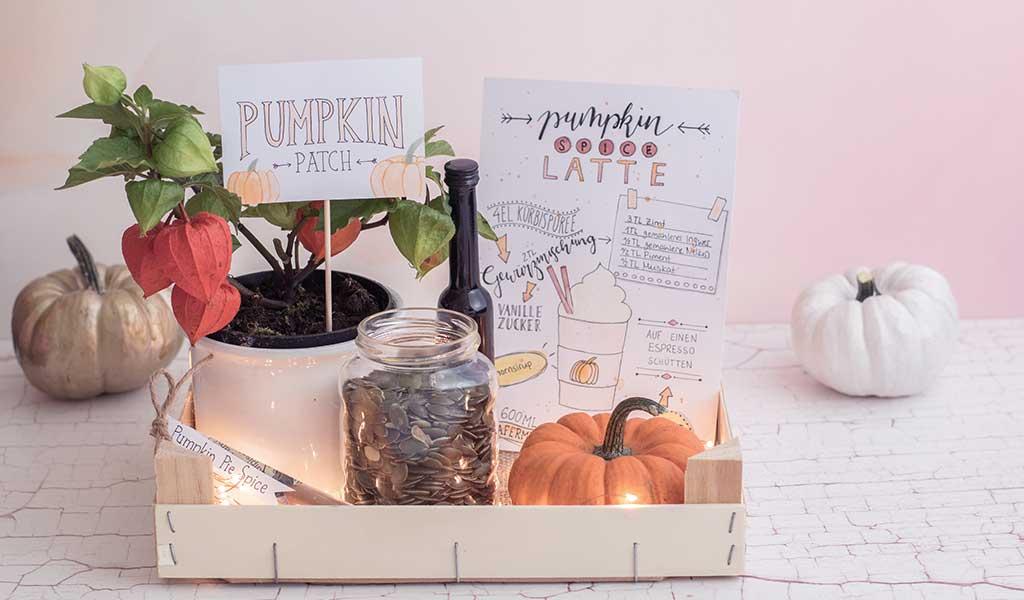 Pumpkin Patch als Geschenkkorb
